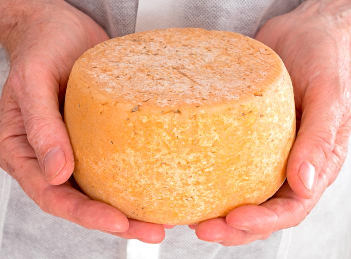Приготовить сыр пармезан в домашних условиях