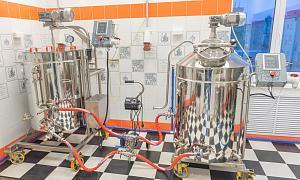 2-х посудная пивоварня 350 л на базе ЗФА от Доктор Губер